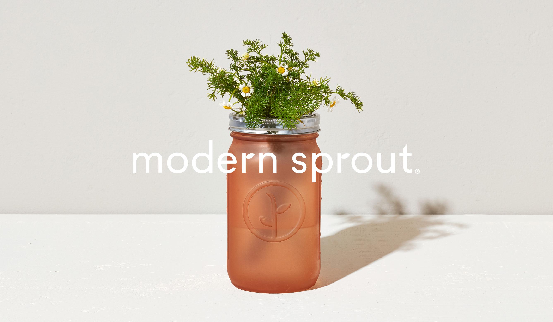 ModernSprout1_new